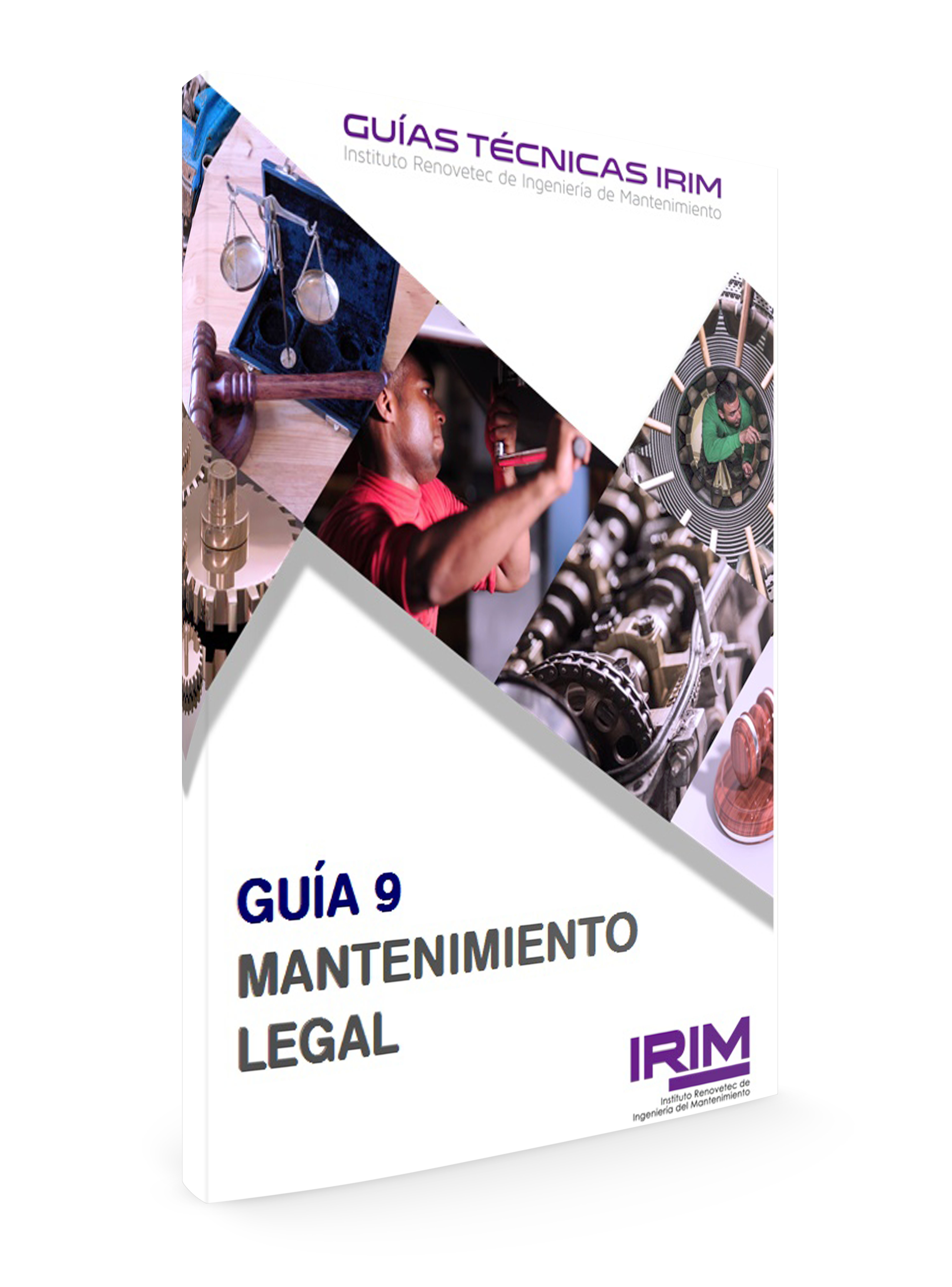 GUIA 9 IRIM: MATENIMIENTO LEGAL